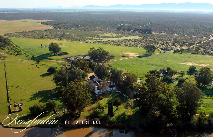 Kersefontein Guest Farm Hopefield Western Cape South Africa
